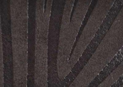 Zebra-bezbarwna
